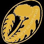 Rugby Halle Logo gold Kopie.png