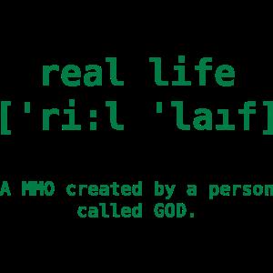 real life MMO 4