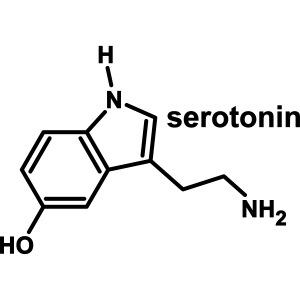yellowibis_serotonin_text