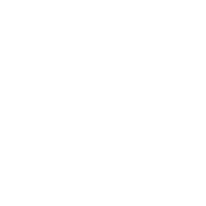 Skull Covered With Lace - white