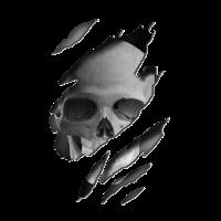 in-skin