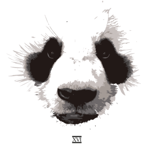 Panda Gesicht