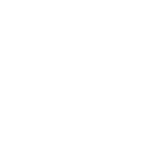 ringelmann-logo-big-w_auf_transparent.png