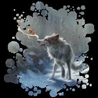 Wolf Eichhörnchen Winter
