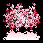 Vélo fleurs rose