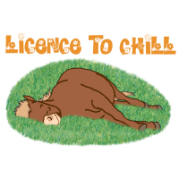 Licence to chill