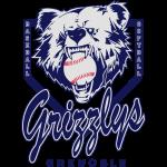 logoGrizzlyBase