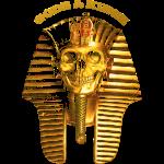 thecrookcats_pharao #gold