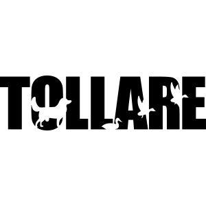 logo tollare einfarbig