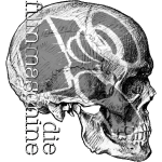 fm skull.gif