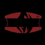 BBQ aus Rheinhessen Logo für helle/weisse Kleidung