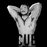 gtg15_gradient_cub