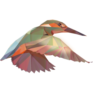 Kolibri Polygon