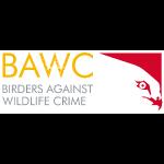 BAWC Horiz Logo Soli