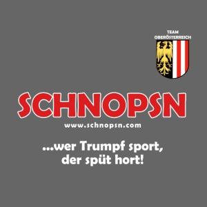 T Shirt Oberösterreich png