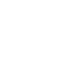 END THE CAGE AGE PIG
