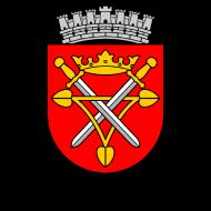Motiv ~ Wappen Hermannstadt