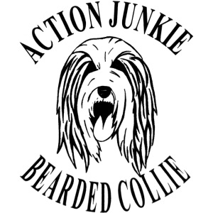 Bearded colli Actionjunk