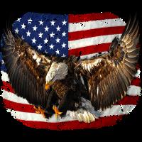 eagle USA Flag Adler freedom