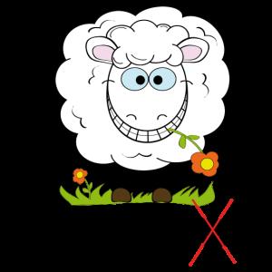 Schaf - SchaRf