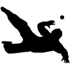 floorball goalie