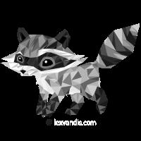 Raccoonus Triangle