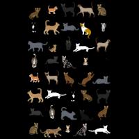 Alle Katzen
