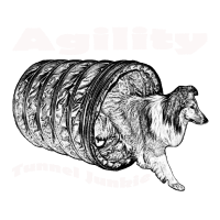 Agility Tunnel Junky W