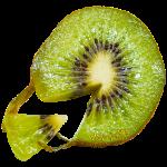kiwi_logo.png