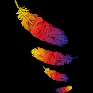 Feder Farbe Federblatt Vögel