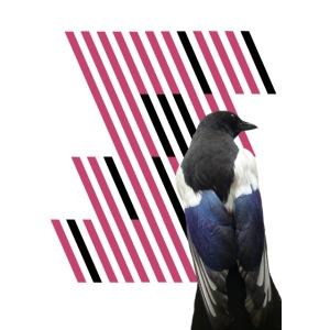 Vogelkaefig