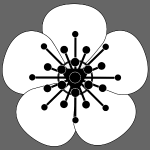 8PWC White