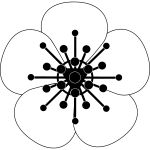 8PWC Transparent