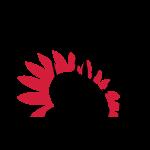 PSS Logo 3