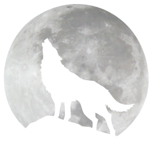 Wolf im Mond