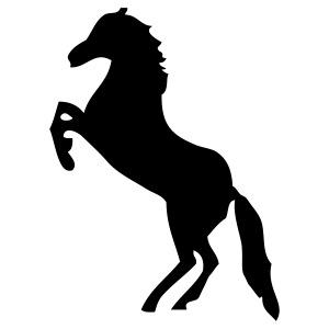 Pferd - Pferde