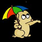 gnappa ombrello