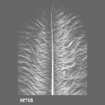 ARTUS_TSHIRT-SPREADSHIRT_DEF.png