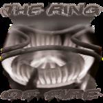 TheRingOfFire - Gray