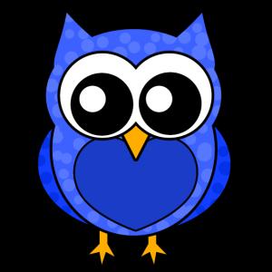 Eule für Jungs / Owl