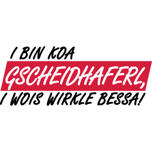 GSCHEIDHAFERL - I WOIS WIRKLE BESSA