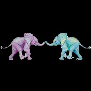 Elefanten - Beste Freunde