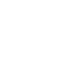 Eine kunstvoll verzierte weiße Qualle