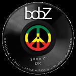 vinylbob