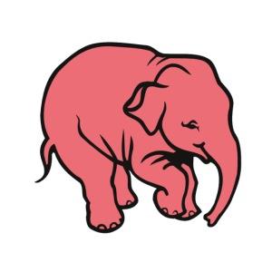 DT olifant