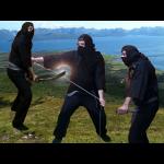 Chasvag.com ninja