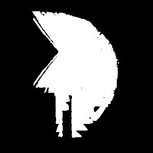 De LiTi-Sparta Weiß