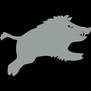 Schwein springt 2015