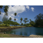 TAHITI COCOTIERS