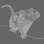 Little rat doodle white